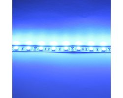 Лента 5050 60 Led IP33 Blue эконом класс - Митино Свет