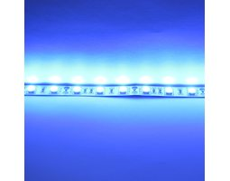 Лента 5050 60 Led IP33 Blue эконом класс