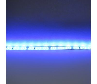 Лента 2835 60 Led IP65 Blue (Высший класс)